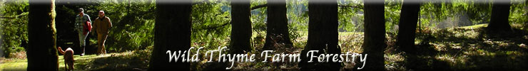 Wild Thyme Farm Visionary Forestry